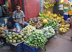 Fruit seller, Town Hall Bazar, Dhaka, Bangladesh. (karla.hovde) Tags: bangladesh asia travel dhaka city urban outdoor market bazar fruit mystery