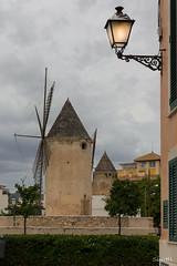 Es Jonquet (Siurell Blr) Tags: baleares balearicislands esjonquet illesbalears islasbaleares palma espaa molino windmill