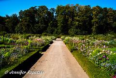 The way of park (Bernsteindrache7) Tags: summer sony alpha 100 color flora fauna flower bloom blossom blume outdoor landscape park