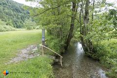 End of the Barefoot Trail Bizau (HendrikMorkel) Tags: austria bregenzerwald family sonyrx100iv vorarlberg sterreich mountains alps alpen berge barfusswegbizau barefoottrailbizau