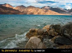 Panagong-Tso - an Endorheic Lake at 14400 Ft Altitude - DSC_1713 copy (ragiks) Tags: travel india leh himalayas ladakh nationalgeographic nikonflickraward