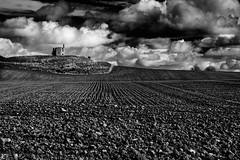 field (zip po) Tags: ireland blackandwhite field clouds landscape bnw cokilkenny