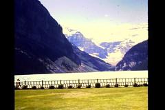 Canadian Rockies (Banff/Jasper, Alberta, Canada) - Ektachrome slides taken July 3-10, 1964 (evidentress) Tags: flowers vacation mountain lake canada gardens rockies hotel 60s roadtrip conservatory lodge banff 1960s roadside lakelouise slides ektachrome 1964 banffhotel jasperpark