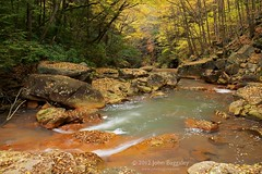 Autumn in West Virginia (John Baggaley) Tags: autumn nature forest river landscape outdoors landscapes nikon day outdoor westvirginia d800 douglasfalls borderfx afsnikkor2470mmf28ged
