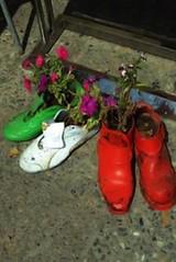 Παπούτσια γλάστρες!!!