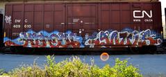 HINDUE, GOULS. (NTHESTREETS) Tags: streetart art train graffiti orlando florida graf railway trains vandalism boxes spraypaint boxcar graff aerosol freight boxcars vandals freights hindue gouls hundu
