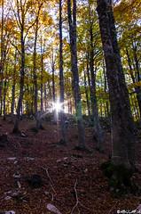 Il sole nascosto. (Abulafia82) Tags: autumn panorama color landscape colore pentax mano 1855 autunno colori paesaggi paesaggio 2012 lazio k5 abruzzo autofocus libera ciociaria sagradellacastagna valcomino forcadacero da1855wr 1855wr pentaxk5 pentaxda1855alwr da1855alwr tappoermetico ottobre2012