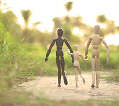 Family leave...♥ (Faisal | Photography) Tags: morning family sun white green garden happy eos soft dof bokeh good 14 woody usm 50 tones ef ef50mmf14usm 50d canoneos50d faisal|photography فيصلالعلي familyleave♥