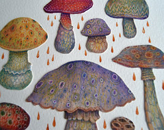Sunshine stalkers - detail (VLADIMIR... . . .) Tags: color nature mushroom fairytale forest paper paperart mushrooms artwork woods handmade fungi fungus
