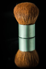 Day 299- A lost brush, a willing macro subject! (Wishard of Oz) Tags: macro nikon makeup brush 105mm day299 sb900 project366 365the2012edition project3662012 25oct12 day17601827