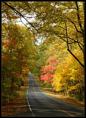 Virginia Country Road (bill.lepere) Tags: autumn leaves virginia countryroad shenandoahnationalpark novaphoto blepere