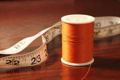 The Orange Thread (Elizabeth_211) Tags: orange thread sewing tapemeasure 52weeks2012
