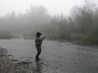 Alaska Kenai River Fishing and Saltwater 18