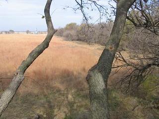 Kansas Trophy Whitetail Bow Hunt 6