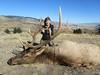 Montana Elk Hunt - Bozeman 9
