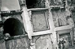 The Skull (Eddy Allart) Tags: monochrome cemetery analog spain cementerio x andalucia espana cranium córdoba spanje begraafplaats blanconegro craneo schedel cranio
