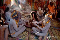 Another World....DSC_0375 (subirbasak) Tags: people india color indian smoke fair yogi ritual devotee hinduism basak pilgrim rites naga jota mela candidshot haridwar indianwomen festivalofindia akhara kumbh peopleofindia kumbhamela junaakhara indiaphoto indianritual subirbasak indianfair subirbasakorgfreecom colorfullcloths kumbh2010 ritualsofindia othersideofindianpeople kumbhmela2010 mahakumbh2010 traditionalritual kumbhafair kumbhmelainharidwar indiansandhu kumbhfairinharidwar kumbhfair2010 colorfulpeopleofindia indiannagababa nadedmonk purnakumbh2010 traditionalritualofindia facesofindiannagapeople nudesandhu indiantraditionalritual nagasandhusakhara purnakumbh