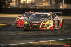 APR-Motorsport-Rolex-24-2013-067
