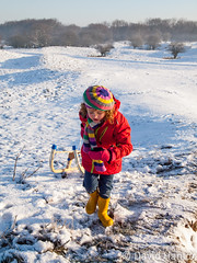 Girl pulling sledge (dave hanlon) Tags: winter holiday snow playing cold girl hat kids scarf children fun outside outdoors happy vakantie lol dunes dune sneeuw hill natuur kind recreation pulling wintersport duinen pleasure awd meisje active sneeuwpret sledge winterfun sledging slee muts kou pret koud duin spelen plezier vakantiegevoel gelukkig laarzen geluk handschoen vreugde duingebied ontspanning recreatie amsterdamsewaterleidingduinen dezilk ontspannen kleuter sleeen sleetje natuurbeleving