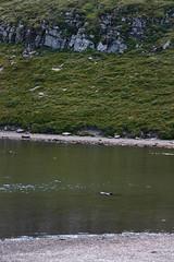Scaffaiolo Lake - Lago Scaffaiolo (Andrea Lugli) Tags: appennino toscoemiliano north appennines modena italy mountain monti canon sigma dc 18250 hsm eos450d