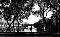 Sin cadenas sobre los pies (Sebas Fonseca) Tags: sebafonseca buenosaires argentina reserva ecologica black blackandwhite white bnw urban nature people backlight world walk sony ilce 6000