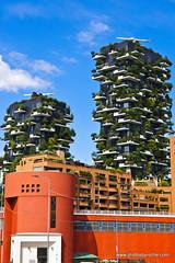 Homes among the trees (doveoggi) Tags: 9580 city italy lombardy milan apartment trees
