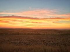 Golden Sunrises (nophoto4jojo) Tags: field beautiful creation godshandiwork commute sunrise seasons snapseed iphone6plus activeassignmentweekly bestofweek1 bestofweek2 bestofweek3 bestofweek4 bestofweek5