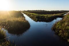 McCue Drain (dustaway) Tags: landscape richmondvalley richmondriverfloodplains sugarcane drain water winter drainagesystem fields sun lateafternoon ruralaustralia rurallandscape eastcoraki australianlandscape mccuedrain