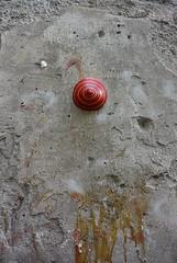 Intra Larue 809 (intra.larue) Tags: intra urbain urban art moulage sein pecho moulding breast teta seno brust formen tton street arte urbano pit urbana boob italie italy italia napoli naples tetta