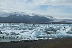 Jokulsrln_2176 (leoval283) Tags: ijsland iceland jokulsrln glacierlagoon ijs gletsjer