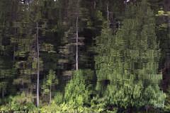 rve (jacinthe leblanc) Tags: rve flou lac