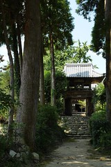 P1020470  Shiyouzan-Koufukuji Temple (Keishi Etoh rough-and-ready photoglaph) Tags: kumamoto tamana   panasonic lumix gx7 panasoniclumixgx7 dmcgx7 panasonicdmcgx7 microfourthirds voigtlndernokton25mmf095 voigtlnder cosina 50mm mf manualfocuslens   koufukujitemple