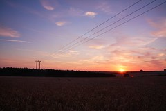 Three Lines (Andrew.King) Tags: pylons lanscape sunset evening sihlouette trees tree hay corn wheat harvest shadow contrast orange colour long exposure nikon d7100 cokin nd filters azure sky