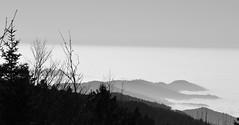 View from Schauinsland IX (ericgrhs) Tags: freiburg badenwrttemberg schauinsland schwarzwald blackforest clouds mountains