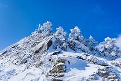 Harry_30832,,,,,,,,,,,,,,,,,,,,,,,Hehuan Mountain,Taroko National Park,Snow,Winter (HarryTaiwan) Tags:                       hehuanmountain tarokonationalpark snow winter mountain     harryhuang   taiwan nikon d800 hgf78354ms35hinetnet adobergb