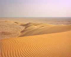 Crinkle Tail Dune With Ridge (Doha Sam) Tags: 100 4x5 analogue chrome crowngraphic desert dunes e6 epsonv700 film fuji largeformat linearscan manualfocus pacemakercrowngraphic piccure positive qatar rawtherapee samagnew sand scan southerndesert summer velvia wilderness iso100 smashandgrabphotocom wwwsamagnewcom