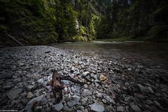 Light (MioKenny) Tags: creek bach fluss wasser landscape light lightroom alpha7rii austria alpen simplysuperb stone outdoor sterreich valley tal