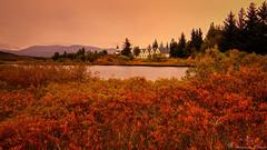 ingvellir. (Geinis) Tags: iceland sland autumn canon canon70d colorful ingvellir mountain church tokina1116mmf28 tree travel
