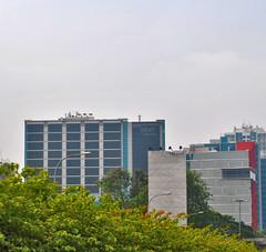 Dafam Teraskita (BxHxTxCx (more stuff, open the album)) Tags: jakarta building gedung hotel architecture arsitektur