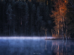 Oct 12, 2012: Cold morning (just.like.that.) Tags: autumn wild mist lake cold tree fall water colors leaves pine forest dark dead dawn early woods frost over smland fir birch sverige wilderness spruce fot isaberg smokeonthewater hestra patricivan andabitoffireintheskyaswellactually