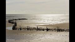 Terschelling (Ria Rotscheidt) Tags: light sun beach terschelling strand waddenzee fence silver island waddeneiland sand wandelen isle zon fietsen zand hek eiland prachtigweer zilverlicht lekkeruitwaaien eveneenweekjeweg