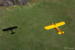 Piper J-3 Cub (Champion Air Photos) Tags: