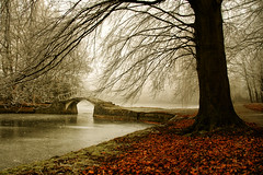 Fall (NightFox9 - TouTouke) Tags: park wood morning bridge autumn trees red sky white mist snow cold reflection tree green fall nature wet water beauty leaves weather misty fog forest river walking landscape leaf frost flood outdoor path horizon ngc seasonal dream relaxing foggy calm foliage silence luck serenity dreamy lonely ripples botany leafs footpath bestcapturesaoi elitegalleryaoi blinkagain