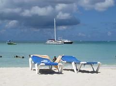 beach palm aruba caribe oranjestad