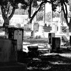 tombs (Laura) Tags: blackandwhite bw graveyard sq