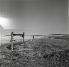 Right of Way (JimShootsFilm) Tags: blackandwhite 120 film field america fence mediumformat square highway gate montana unitedstates lightleak lightleaks squareformat barbedwire prairie agriculture plains prairies kiev ilford barbedwirefence lewisandclark kiev88 lewisandclarktrail ilforddelta sovietcamera hasselbladski filmfilmforever bwfp