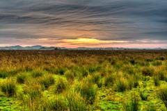 Roof of clouds (mnielsen9000) Tags: clouds sunrise landscape hdr d600 mygearandme mygearandmepremium mygearandmebronze mygearandmesilver mygearandmegold mygearandmeplatinum