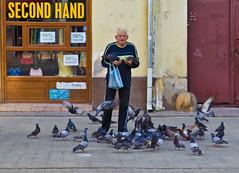 Food's here! (AlexTalmaciu) Tags: man canon eos romania shops 1750 feed tamron f28 pidgeon timisoara 60d