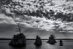 In The Spotlight (Dan Mihai) Tags: ocean sea blackandwhite bw seascape nature monochrome clouds oregon landscape coast landscapes rocks tillamook pacific dramatic spotlight pacificocean threegraces oregoncoast drama garibaldi seastacks thethreegraces filteredlight tillamookbay barview cooscounty