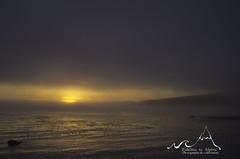 Sombrio Beach - Fogset (Tideline to Alpine) Tags: ocean trees sky beach nature water clouds outdoors play britishcolumbia swing vancouverisland driftwood pacificocean serene juandefuca ropeswing juandefucatrail sombriobeach